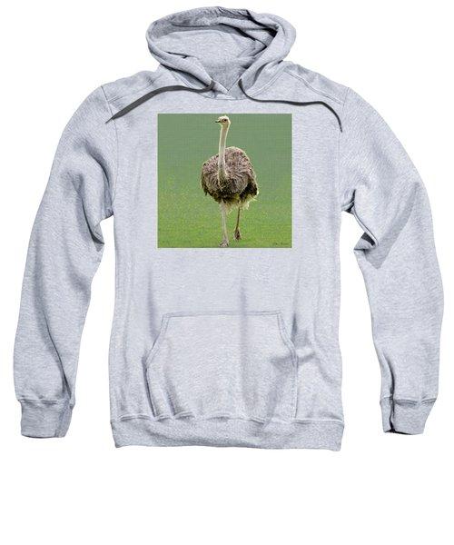 Emu Sweatshirt by Ellen Henneke