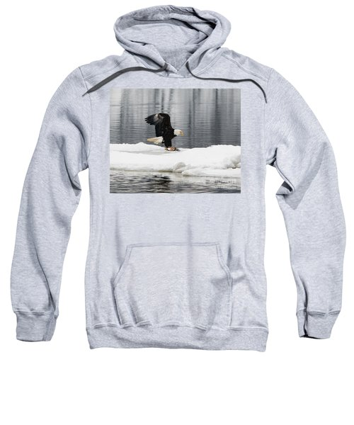 Feeding Time Sweatshirt