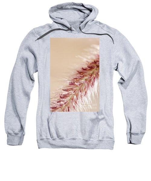Fountain Grass Blooms   Sweatshirt