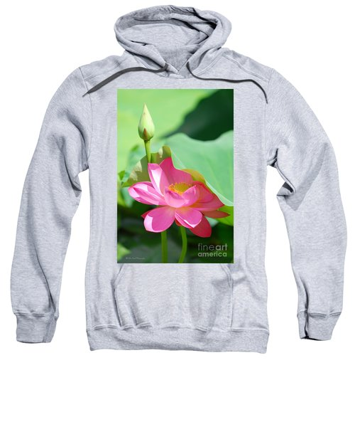 D48l-96 Water Lily At Goodale Park Photo Sweatshirt