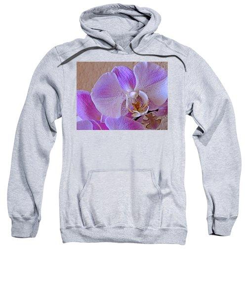Grace And Elegance Sweatshirt