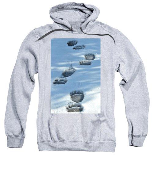 Grizzly Bear Tracks Sweatshirt