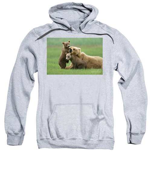 Grizzly Cubs Play With Mom Sweatshirt