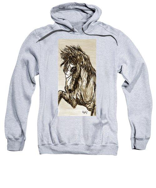 Horse Twins II Sweatshirt