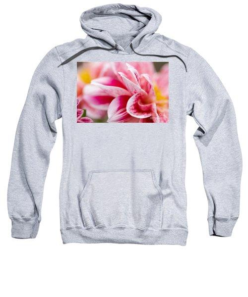 Macro Image Of A Pink Flower Sweatshirt
