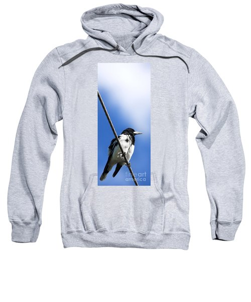 Magpie Up High Sweatshirt by Jorgo Photography - Wall Art Gallery