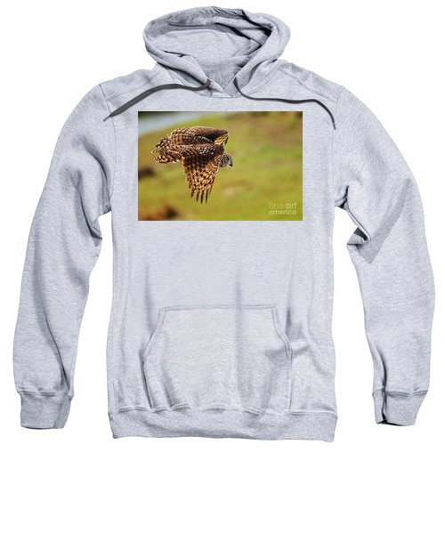 Spotted Eagle Owl In Flight Sweatshirt