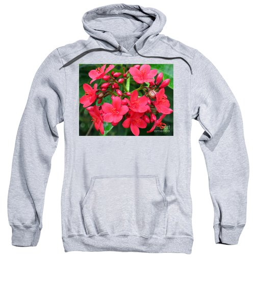 Lovely Spring Flowers Sweatshirt