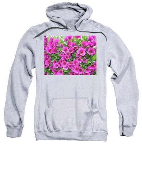 Stareye  Sweatshirt