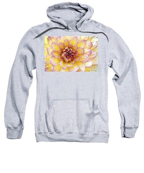 Wet Dahlia Sweatshirt