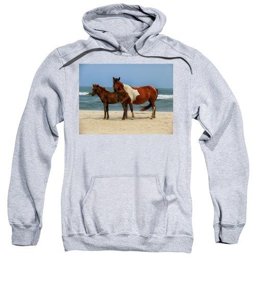 Wild Horses Of Assateague Island Sweatshirt