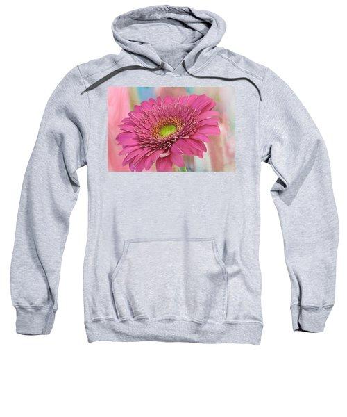 Gerbera Daisy Macro Sweatshirt