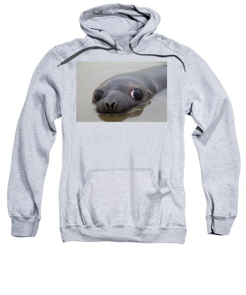 110714p127 Sweatshirt