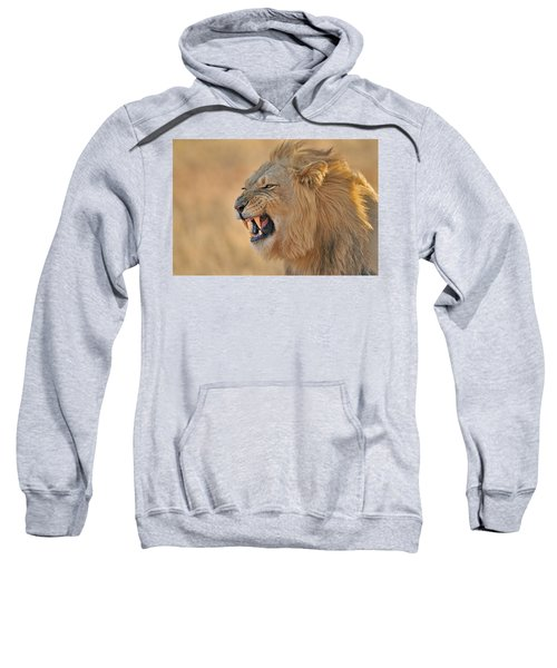 120118p081 Sweatshirt