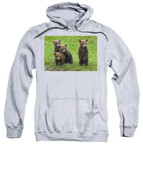 131018p260 Sweatshirt