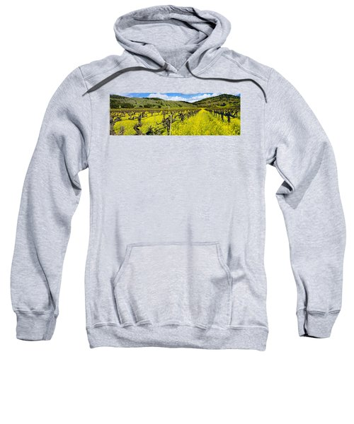 Agriculture - Wine Grape Vineyard Sweatshirt