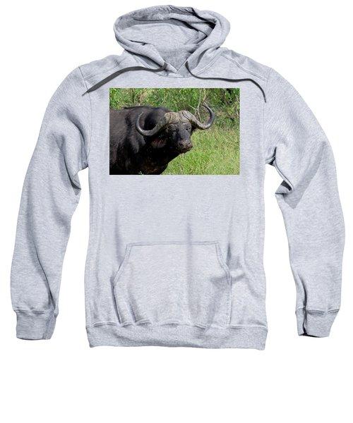 Cape Buffalo Sweatshirt
