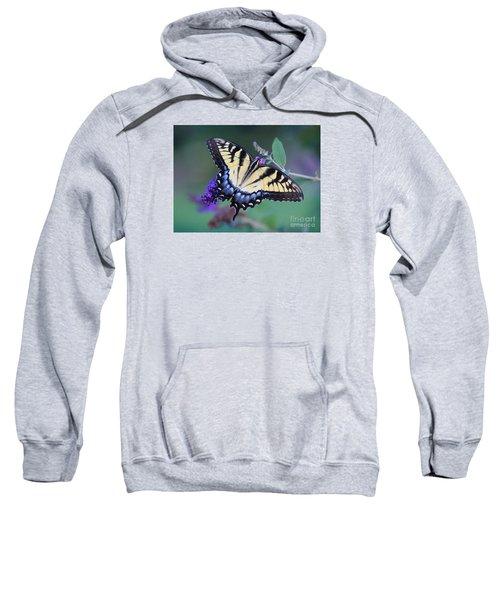 Eastern Tiger Swallowtail Butterfly On Butterfly Bush Sweatshirt