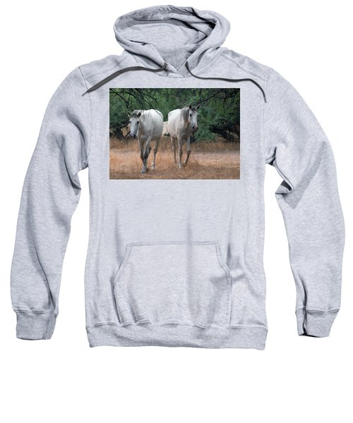 Salt River Wild Horse Sweatshirt