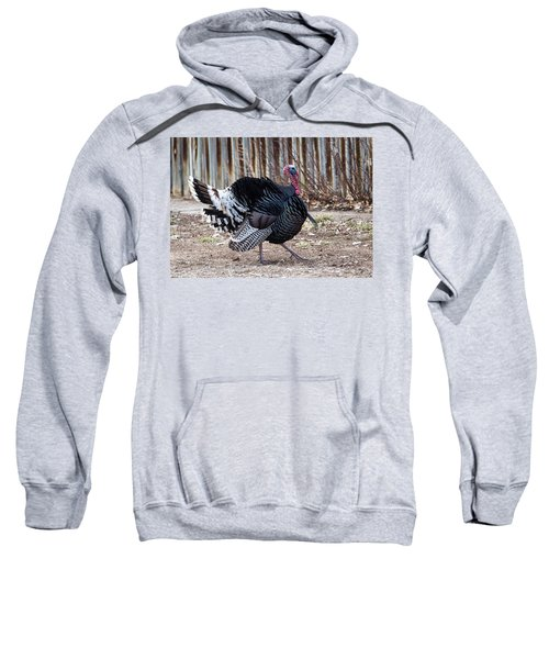 Strutting Turkey Sweatshirt