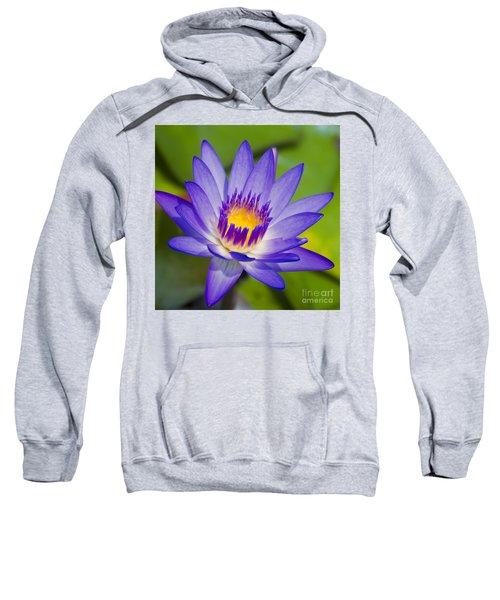 Pupukea Garden Breeze  Sweatshirt