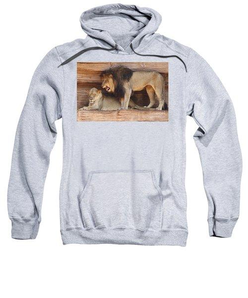 The Feline Honeymooners Sweatshirt