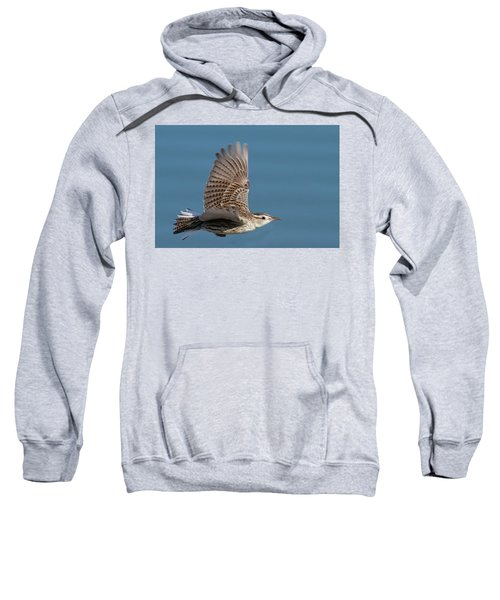Untitled Sweatshirt by Hal Beral
