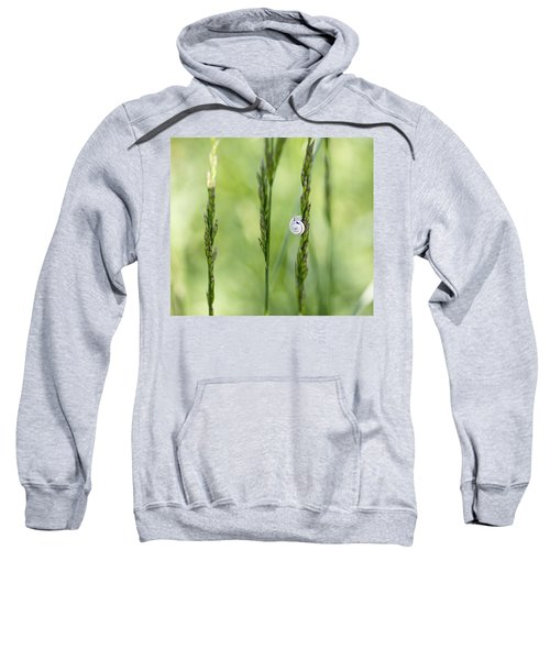 Snail On Grass Sweatshirt