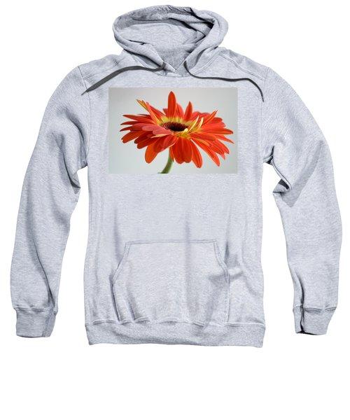 A Beautiful Dream Sweatshirt