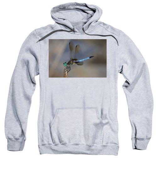 A Dragonfly Iv Sweatshirt