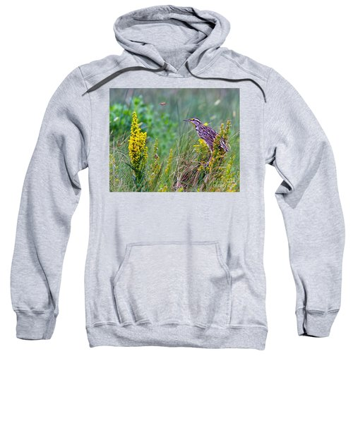 A Golden Opportunity Sweatshirt by Gary Holmes