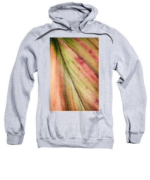 A Leaf Sweatshirt