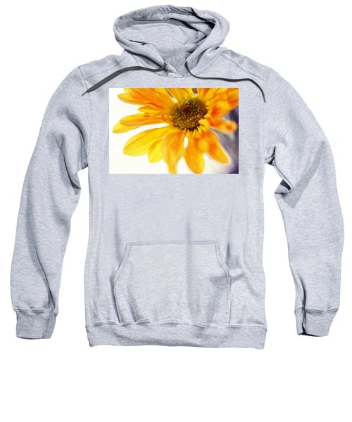 A Little Bit Sun In The Cold Time Sweatshirt
