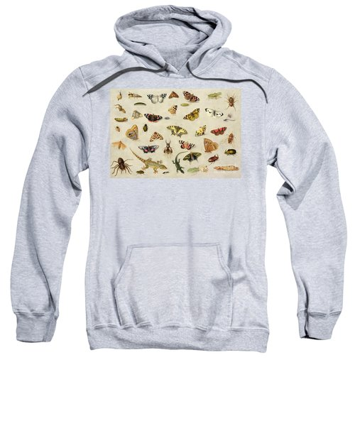 A Study Of Insects Sweatshirt by Jan Van Kessel
