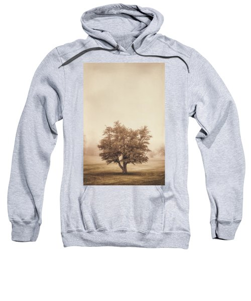 A Tree In The Fog Sweatshirt