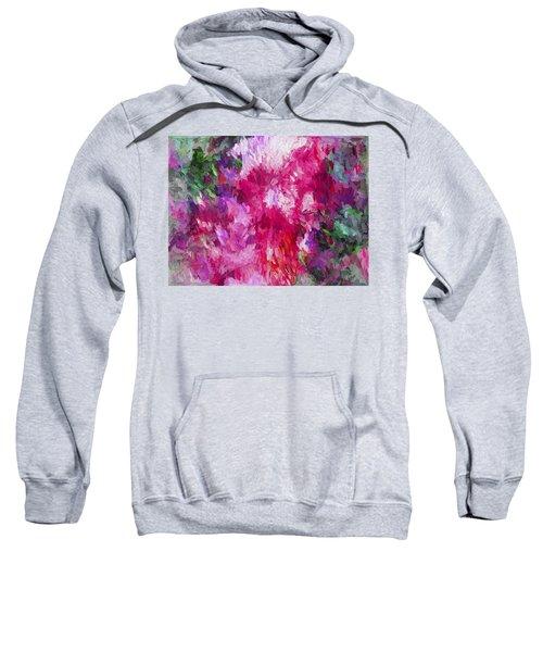 Abstract Artwork 17 Sweatshirt