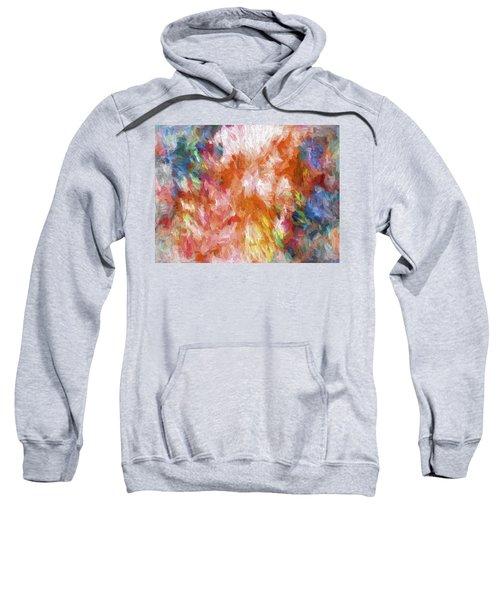 Abstract Artwork 19 Sweatshirt