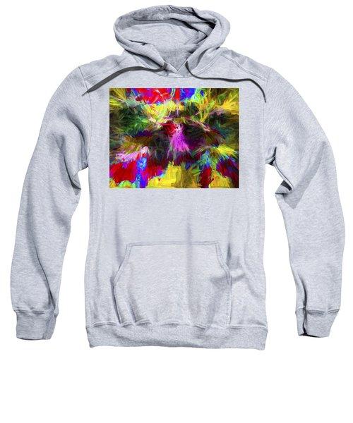 Abstract Artwork 22 Sweatshirt