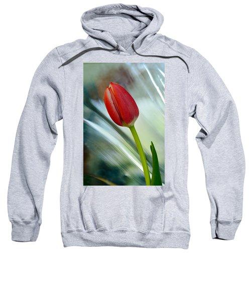 Abstract Tulip Under Glass Sweatshirt