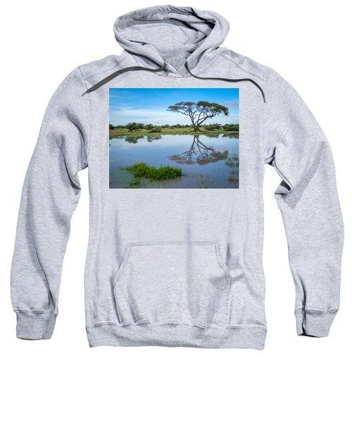 Acacia Tree Sweatshirt