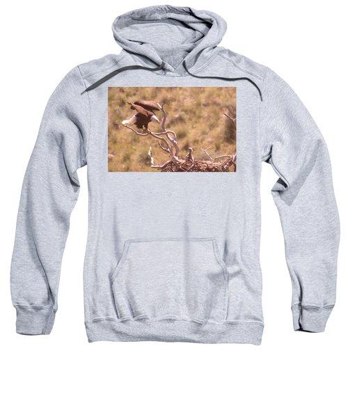 Adult Eagle With Eaglet  Sweatshirt