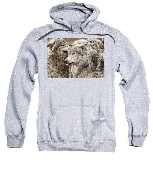 Adult Timber Wolf Sweatshirt