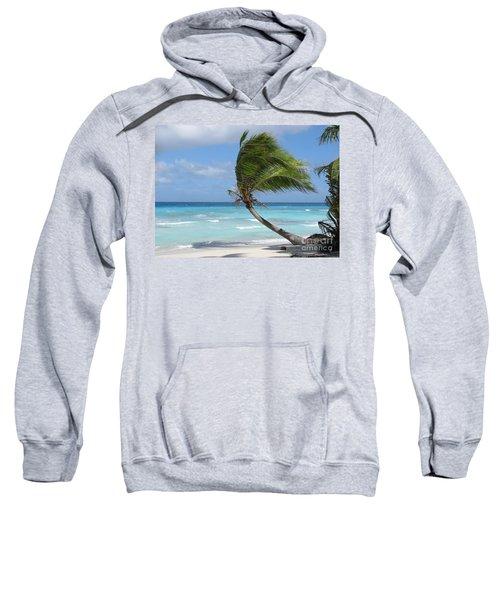 Against The Winds Sweatshirt