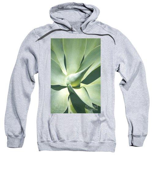Agave Plant 1 Sweatshirt