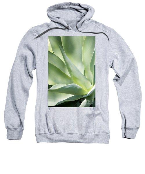Agave Plant 2 Sweatshirt