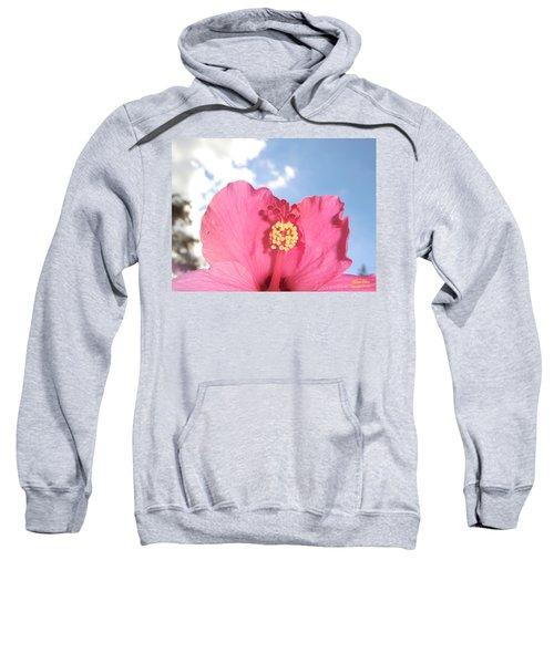 Blissful 33 Sweatshirt