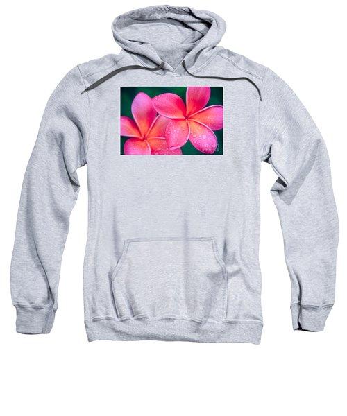 Aloha Hawaii Kalama O Nei Pink Tropical Plumeria Sweatshirt by Sharon Mau