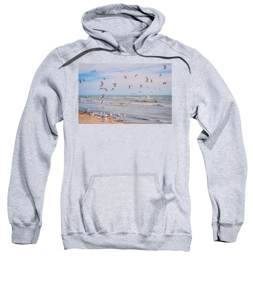 Along The Beach Sweatshirt