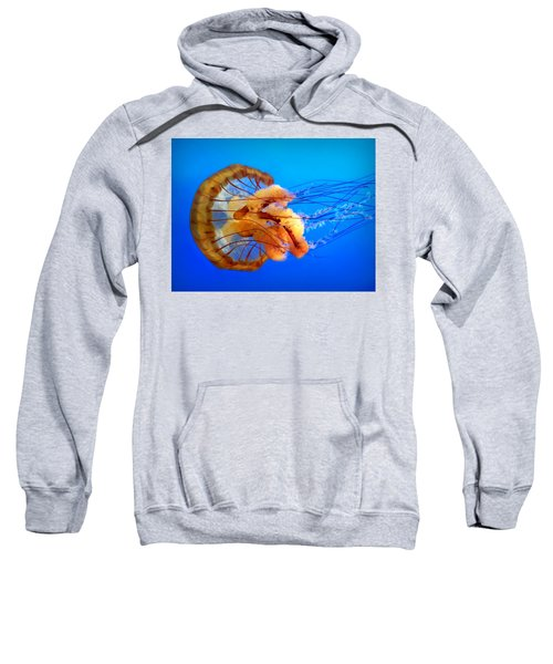 Amber Seduction Sweatshirt