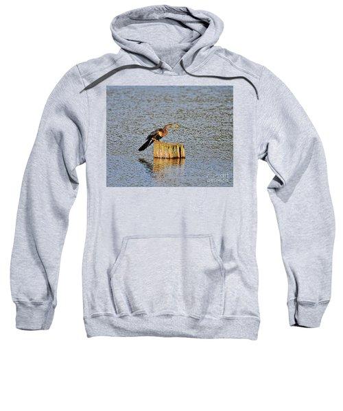 American Anhinga Angler Sweatshirt
